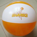 Strandbälle 45cm / 17.5 Inch mit Ihrem Logo image