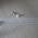 Luftballons (30cm) - individuell bedruckt image